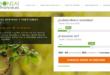 créditos y préstamos de Bonsaifinance